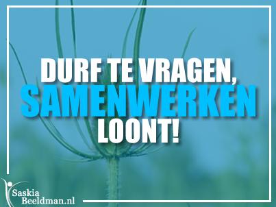 DurfTeVragen.export